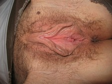 Close-up amateur photo of natural hairy pink pussy with big lips open wide